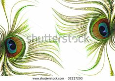 Peacock Feathers Abstract by Marilyn Volan, via Shutterstock