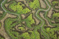 Paisaje Delta de reserva de Doñana es Fractal. En Fisica, y Geografia, lLos perimetros iregulares, de islas, galaxias, etc, se resuelven solo con fractales