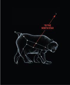 Ursa Major Chart