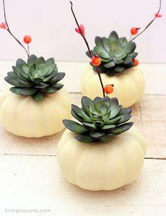 Diy: Des décorations à réaliser avec des mini citrouilles | BricoBistro