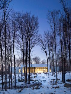 Artful House Envisioned as a Personal Refuge in the Woods