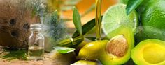 Medicinal Plants and Their Uses: Home Remedies for Dry Hair