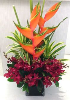 Heliconia Red orchid                                                                                                                                                                                 More