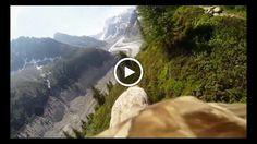 Camara on an Eagles Back | Coolest thing youll ever see! Go pro eagle video goes viral #denverco #colorado #kennarealestate #highlandsranchco