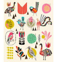 The Birds of Australia Print