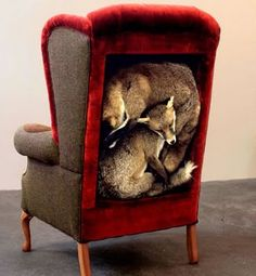 If you happened to wonder what British singer-songwriter Alannah Currie has been up to since the Thompson Twins disbanded in 1993, wonder no more. She is now an artist-upholsterer working under the name Miss Pokeno to create furniture that incorporates taxidermied animals.