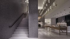David Chipperfield . Valentino Omotesando Flagship boutique . Tokyo (3)