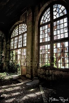 Outside the cites: abandoned places reclaimed by nature help regulate increasingly toxic atmosphere. Where the seed trade happens.