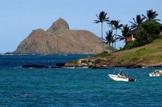11 Day HAWAII Cruise    http://www.roundtripnow.com/deal-details/dc0e3dd0307101179750afd0d14298b7