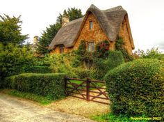 Charming Cottage in Great Tew, Oxfordshire. England - I love the thatched roof. Storybook Homes, Storybook Cottage, Beautiful Buildings, Beautiful Homes, Beautiful Places, Cute Cottage, Cottage Style, Cottage Living, Cottage Homes