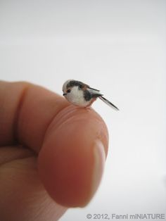 Dollhouse miniature OOAK Long-tailed Tit in 1:12 scale by FannimiNiATURE