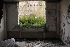 abandoned-detroit-2.jpg (474×317)