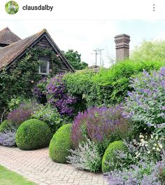rain garden shrubs and trees Garden Shrubs, Garden Beds, Garden Plants, Garden Landscaping, Formal Gardens, Outdoor Gardens, Plant Design, Garden Design, North Facing Garden