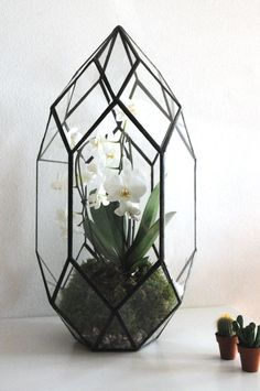 Handmade Glass Terrarium / Modern Planter for Indoor Gardening / Geometric Crystal Shape Orchid Planter Table Greenhouse-in Flower Pots & Planters from Home & Garden on Aliexpress.com | Alibaba Group