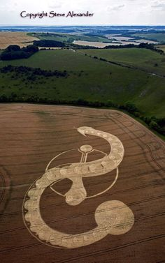 Artists have gone a step further and taken the patterns made by these crop circles and emulated them in their designs. Description from boredart.com. I searched for this on bing.com/images