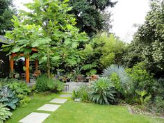 Loree's Dangerously Beautiful Garden
