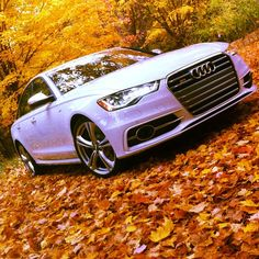 Audi S6...Fall is here!