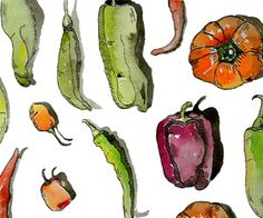 Watercolor and ink green and red peppers. Watercolor And Ink, Painting & Drawing, Stuffed Peppers, Red Peppers, Drawings, Green, Art Ideas, Paintings, Red Bell Peppers