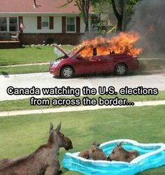 The World Is Still Reacting To Donald Trump Winning The Election With Some Hilarious Memes – 50 Pics