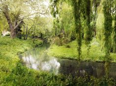 The Halswell River, near Christchurch