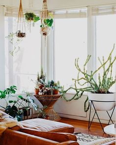 Wow! Just came across this indoor jungle by @westelm at @chyparker her home. Love everything about this room, especially the plant stand with this huuuuge cactus! Love at first sight  #ihavethisthingforinterior #interior #decoration #interiordecor #indoorjungle #cactus #bohemian #bohodecor #vintagevibe #inspiration #details