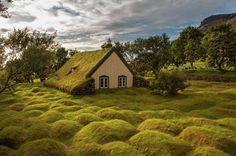 Chiesetta in #legno muschio ed erba si trova in  Islanda