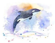 Image result for watercolor orca  whale