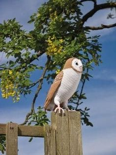 Free crochet pattern for a barn owl Owl Crochet Patterns, Crochet Birds, Owl Patterns, Amigurumi Patterns, Crochet Animals, Crochet Flowers, Crochet Hearts, Crochet Food, Crochet Stitches