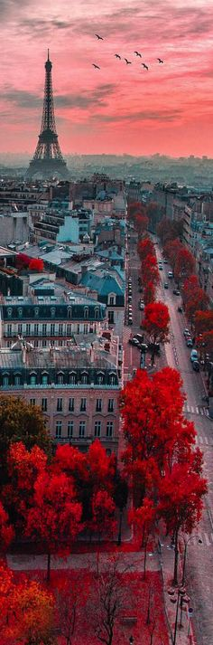 Eiffel Tower, Paris, France. i'm not even that crazy about going to Paris but those colors though