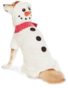 If you're playing in the snow today, keep your pet warm with the Martha Stewart Pets snowman jacket – available exclusively at #PetSmart