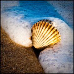 plaj kumsal deniz kumu beach tatil holiday summer holiday yazın yapılacaklar listesi yazın yapılacak şeyler yazın ne yapmalı yazlık aktiviteler blog blogger life style blog deniz kabukları deniz kabuğu Yazın Yapılacak Şeyler / Ben Bu Yaz Bronzlaşmak…