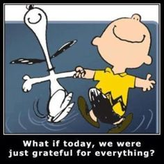 What if today, we were just grateful for everything?