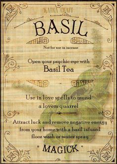 Open your psychic eye with Basil Tea. Magic Herbs, Herbal Magic, Herbal Oil, Magic Spells, Love Spells, Beauty Spells, Healing Spells, Religion Wicca, Witch Religion