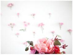 Pinks & Reds : Peonies & Dahlias
