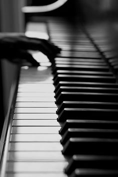 """Poems are rough notations for the music we are.""   ― Rumi"