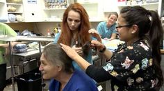 Dr. Jeff Rocky Mountain Vet Cuts Ponytail amid Cancer Treatment