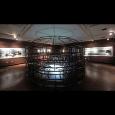 "Will Wilson ""Auto Immune Response"" multimedia installation, one thousand square feet, Heard Museum, Phoenix AZ and Museum of the American Indian, New York, curator Joe Baker"