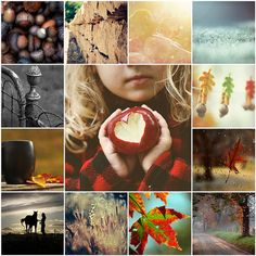 gorgeous fall montage - need to take a picture of A with an apple like that