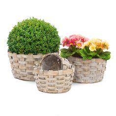 Pflanzkörbe im 3er Set für den Garten