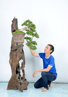 Bonsai- using a Tree to display a tree Bonsai Plants, Bonsai Garden, Bonsai Tree Care, Bonsai Trees, Bonsai Meaning, Styrofoam Art, Sogetsu Ikebana, String Garden, Plantas Bonsai