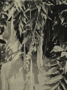 From Mariane Ibrahim Gallery, Zohra Opoku, Wisteria Screen-print on Handwashed paper, 79 × 105 cm Ghana, Old Photography, Wisteria, Oeuvre D'art, Contemporary Design, Screen Printing, Black And White, Gallery, Artwork