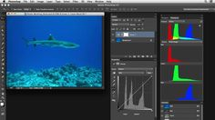 Photoshop Color Correction: Extreme Color Cast | Lynda