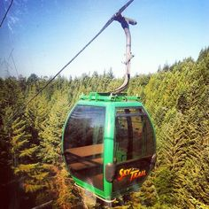 Travel | Northern California | Attractions | NorCal Culture | Hidden Gems | Adventure | Places to See | People | Love Where You Live | Rural | Hometown Pride | NorCal Culture | Staycation | Gondola  | Redwoods | Fear of Heights | SkyTrail | Trees of Mystery | Avenue of Giants