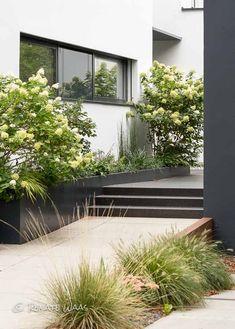 Vorgarten Modern Gestalten