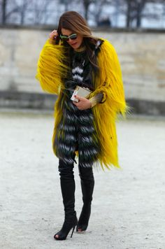 Wacky & Wild Furs / The English Room Blog