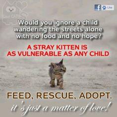 Help the little ones. <3
