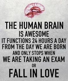 Dipshits falling in love. Once reality hits you and you look back at how incredibly stupid you were, how blinded by love you were...... you then realize that you weren't really thinking you were just guided by your heart while your brain was shut off. Love is dumb! Smart people learn from their mistakes!!!