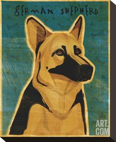 German Shepherd Stretched Canvas Print by John Golden at Art.com