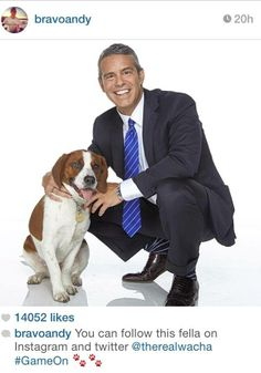 Follow SSR alum Wacha on Twitter & Instagram for paw-some updates on his fabulous life with Andy Cohen: @therealwacha #whywerescue #dogs #rescue #adopt #foster