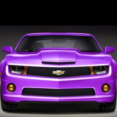 All Things Purple | All Things Purple! / Purple Camaro
